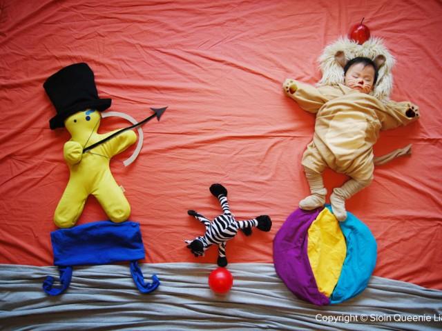 A Daring Circus Act