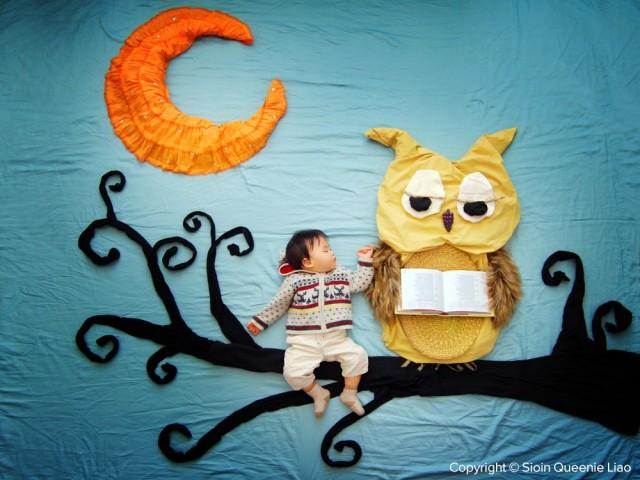 The Wise Owl Storyteller